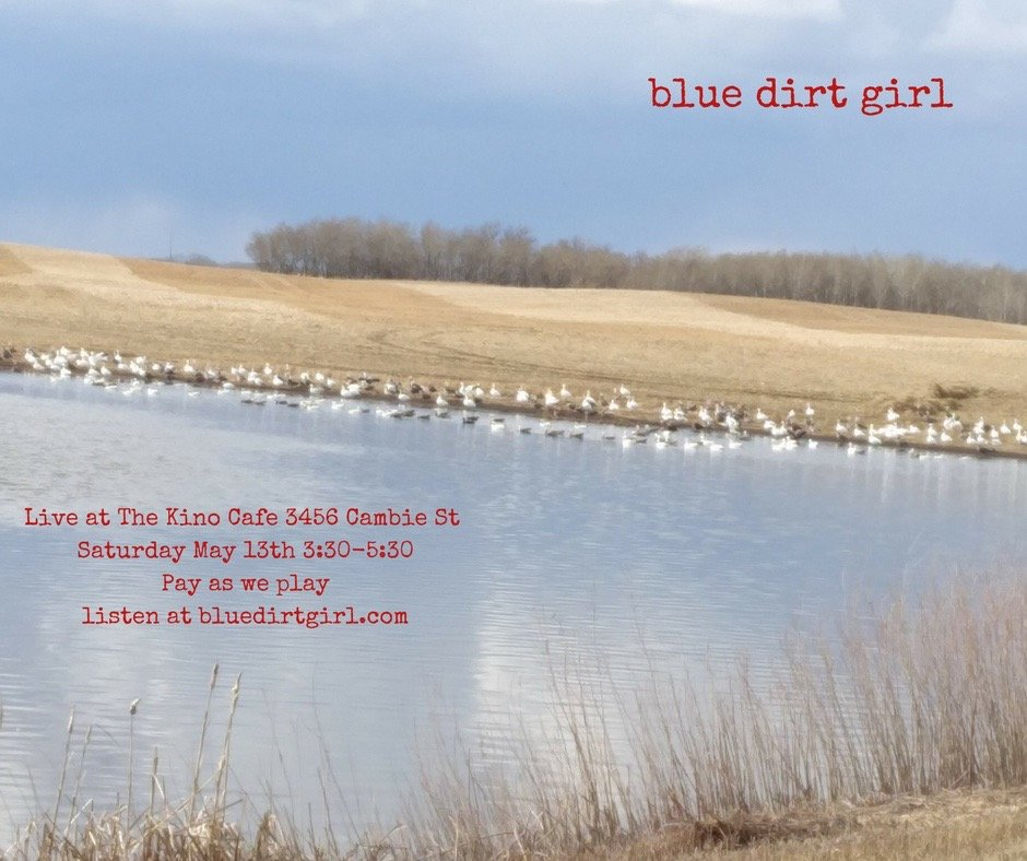 blue dirt girl Kino cafe sno geese and slough pic
