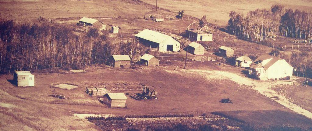 bluedirtgirl lanigan aerial pic 1950 ish Paproski homestead sask